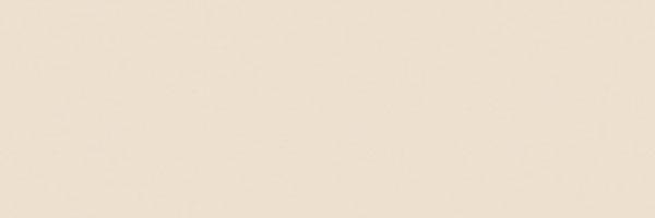 72039 ORCHESTRA FANTASIA 20×60