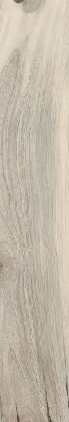 75075 CATLINS NAT RETT  20×120
