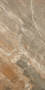 Afossil_brown_30x60 (4)