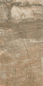 Bfossil_brown_30x60 (5)
