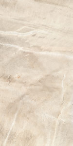 Cfossil_cream_30x60 (2)