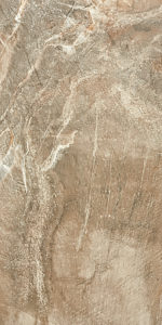Efossil_brown_30x60 (2)