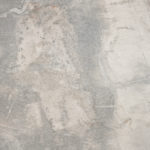 dabk_fossil light grey_50x50_4