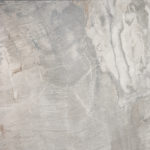 fabk_fossil light grey_50x50_6