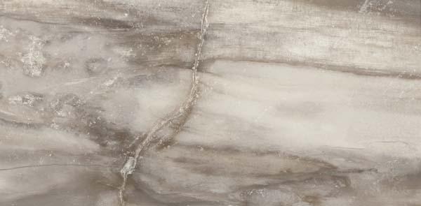 petrified_tree_emil-ceramica_638d8r-238d8p_grey-phanter_30x60
