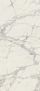 755816 PREXIOUS of REX MOUNTAIN TREASURE