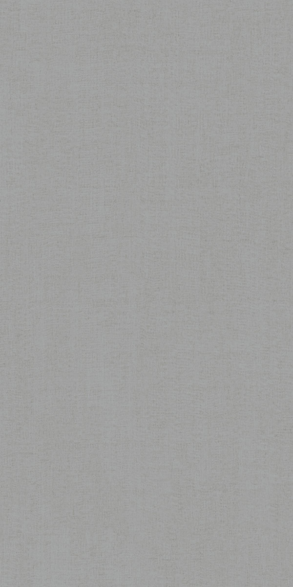 Ariana Canvas canvas grey 60x120