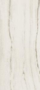 755815 PREXIOUS REX WHITE FANTASY